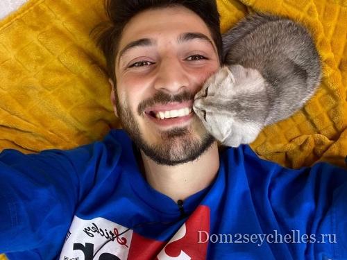 У семьи Оганесян начались проблемы с котенком